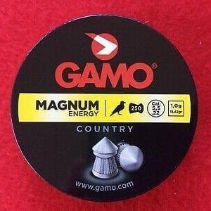 gamo magnum22