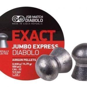 Jumbo Express .22