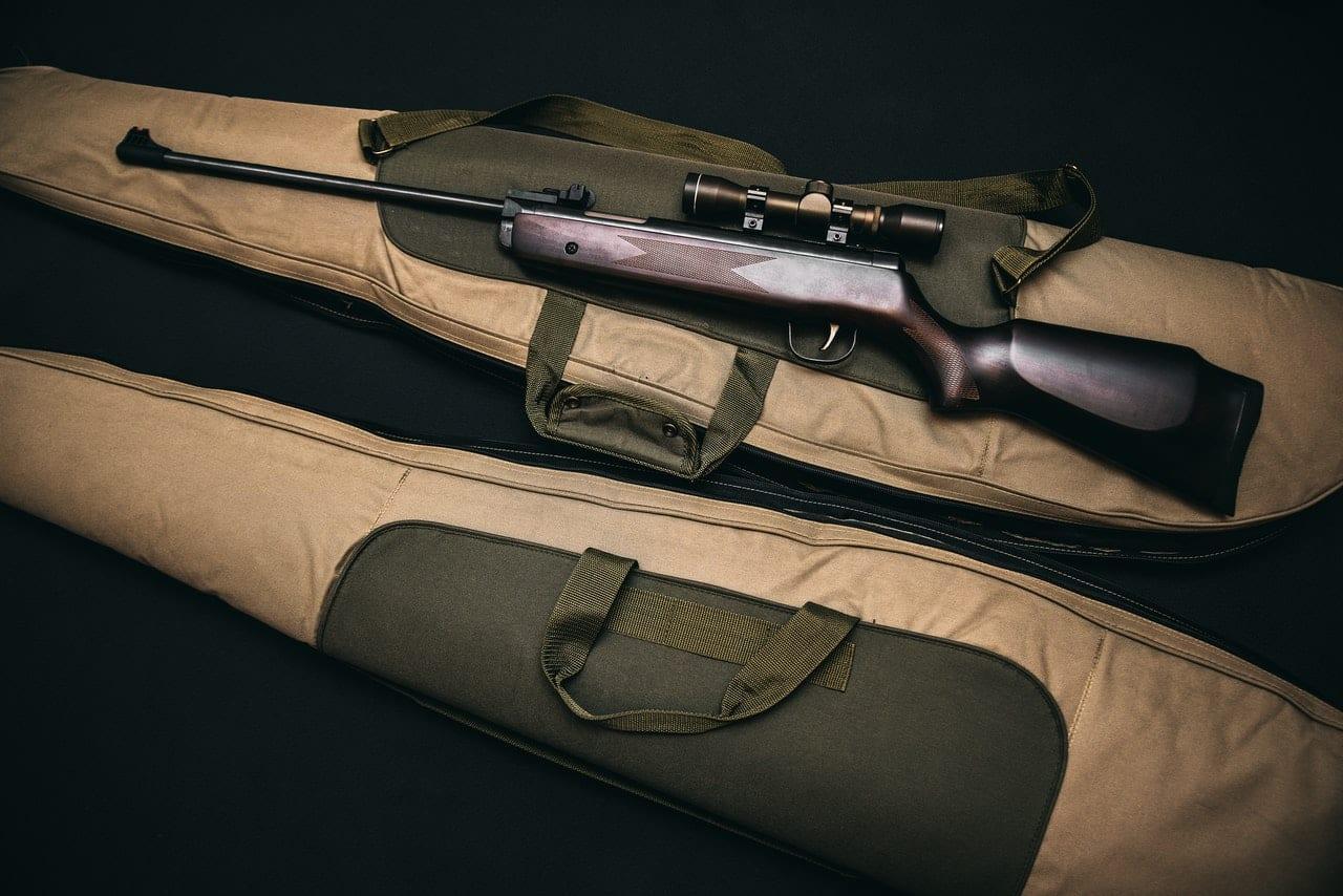 best calibre air gun pellet for hunting