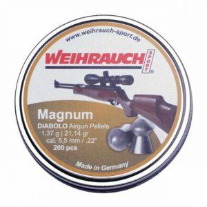 HW MAgnum .22 pellets